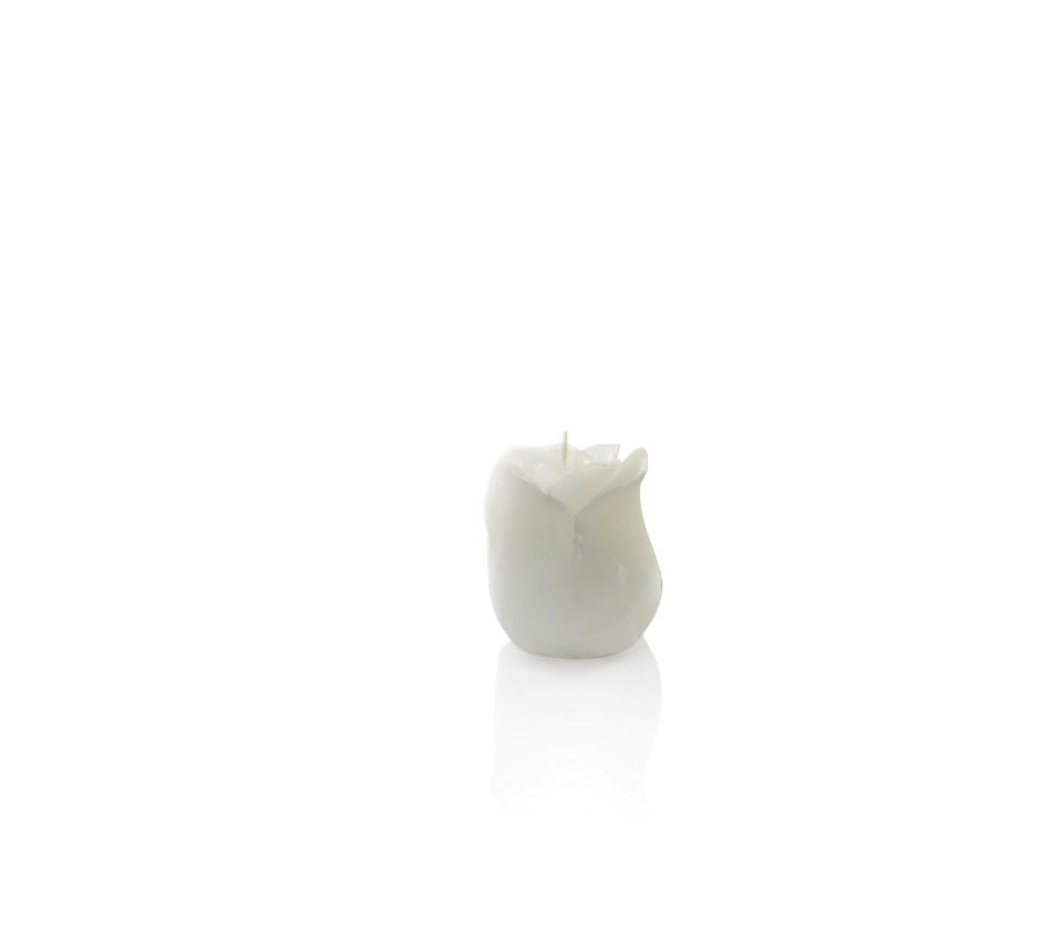 Candela rosa bianca h. 80