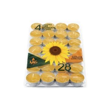 Busta 28 tealights alla citronella