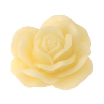 Rosa d. 250 mm in gift box con nastro